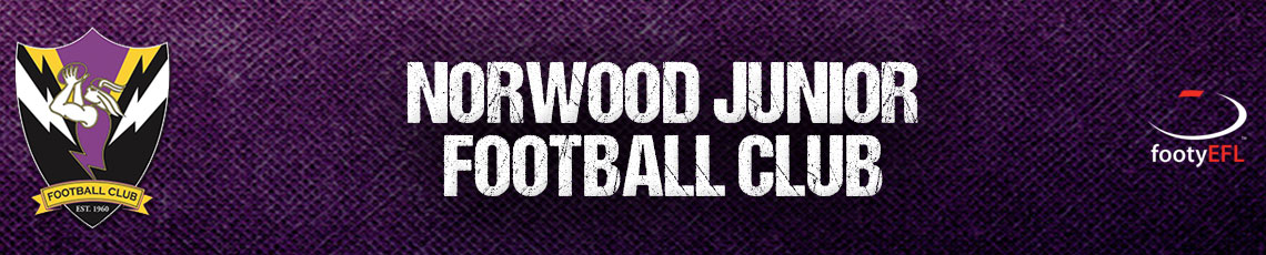 Norwood Junior Football Club Logo